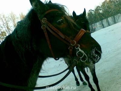 Зимние съёмки кина о кине. - 30012014(006).jpg